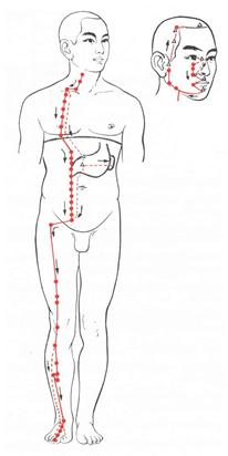 magen nervosität symptome