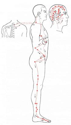 vibrieren im unterleib schwangerschaft